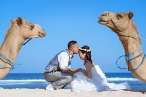 ラクダに見守られてキス