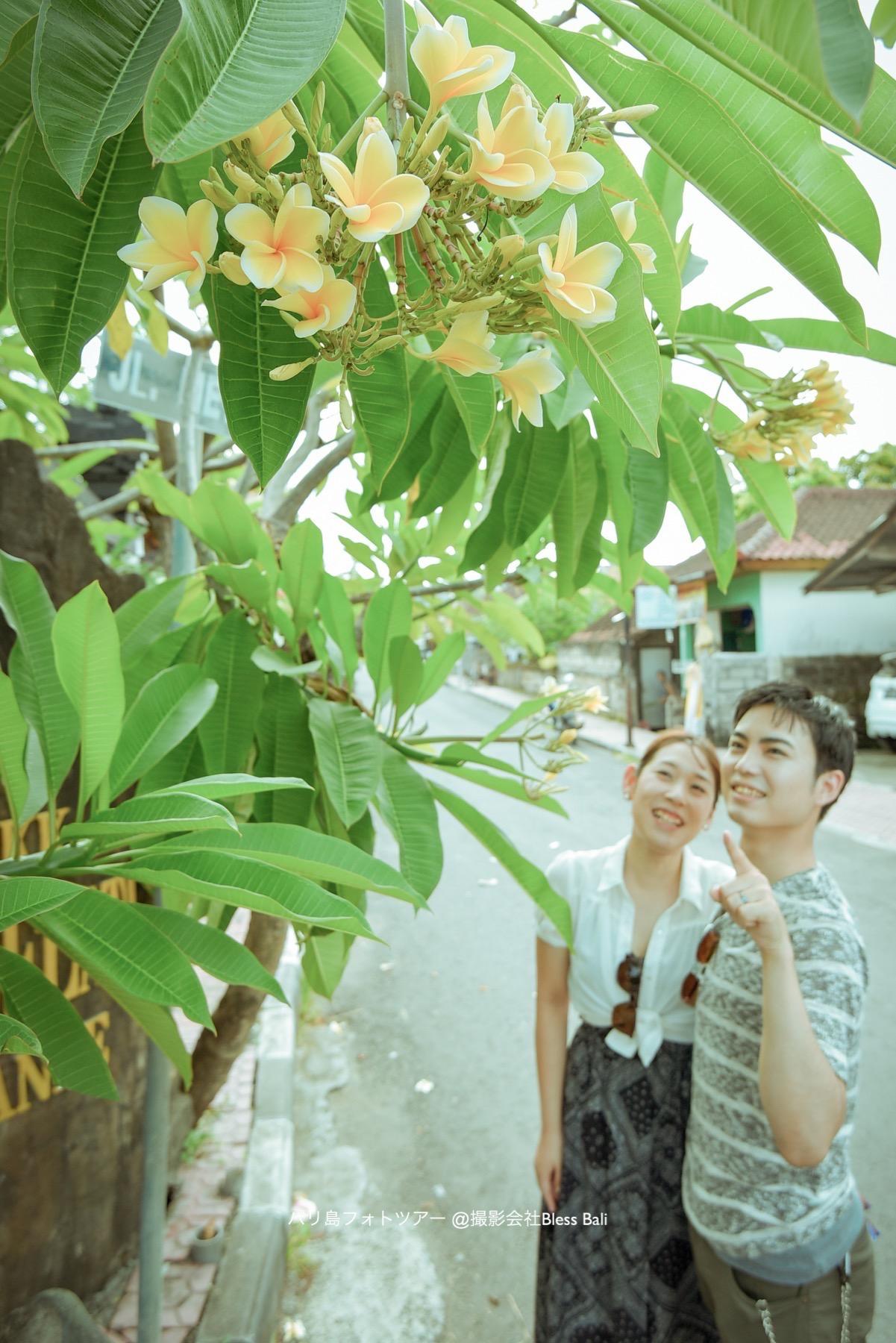 バリ島街フォトを撮影中にフランジパニの木の下で