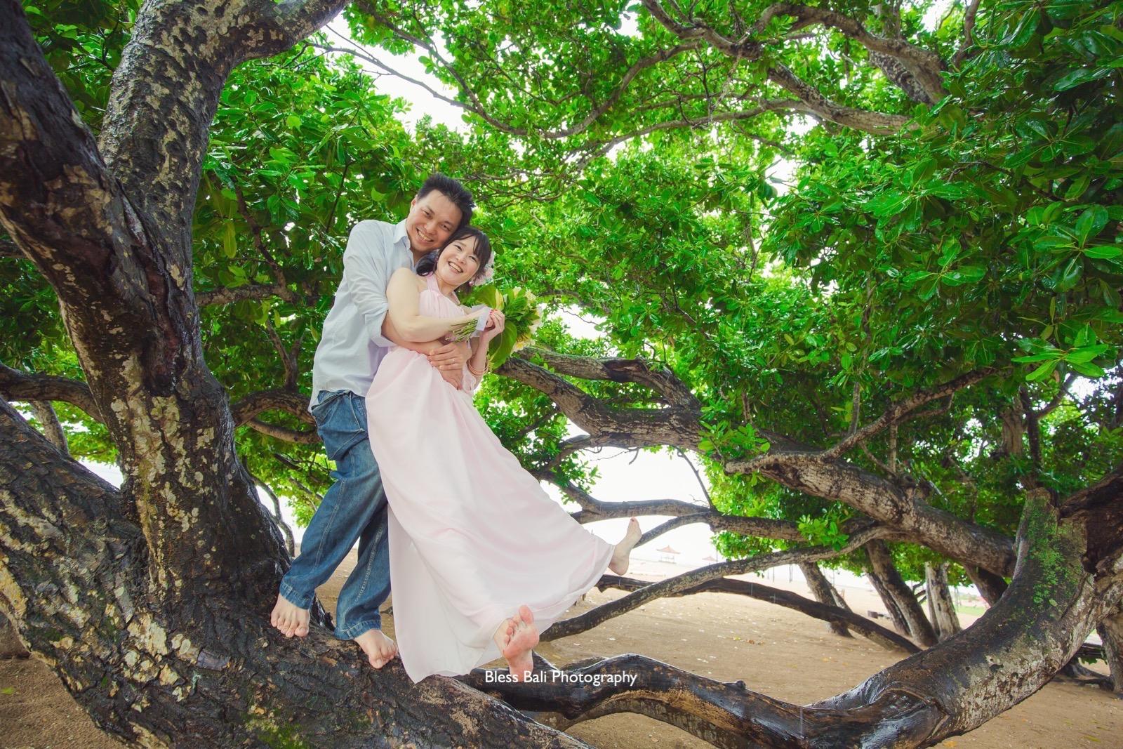 雨に濡れた木の上で撮影